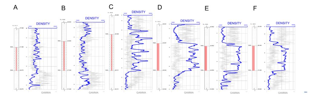 Formation Density Logging – Coal Blasthole Logging
